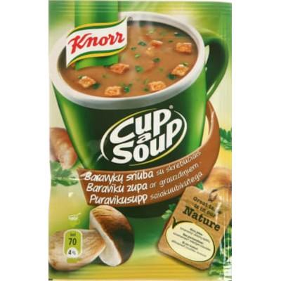 KNORR tiršta vištienos sriuba su skrebučiais, 16 g